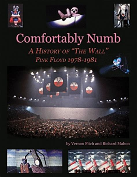 comfortably numb covers pink floyd news brain damage quot comfortably numb a