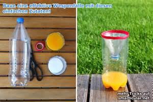 25 Best Ideas About best 25 wespenfalle ideas on pinterest wespen verjagen