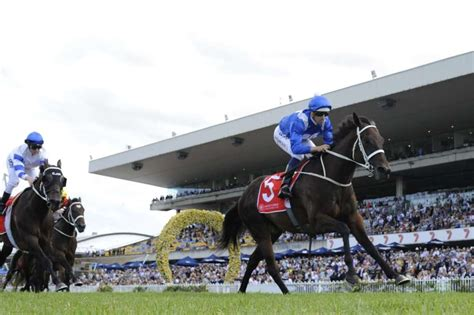 rosehill golden slipper rosehill golden slipper day preview and tips saturday