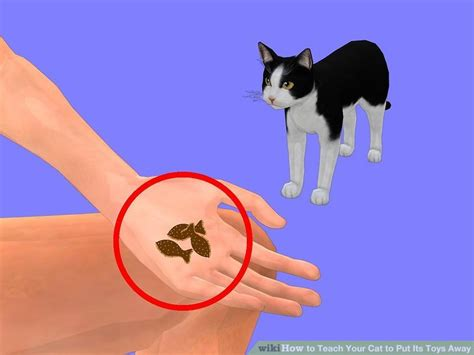 how to your to put his toys away how to teach your cat to put its toys away 9 steps