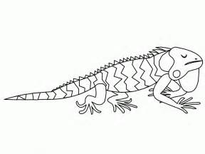 coloring pages printable free printable iguana coloring pages for