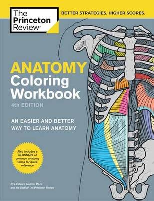 anatomy coloring book 4th edition anatomy coloring workbook 4th edition by princeton review