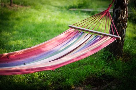 sitting hammock teen sitting on hammock killed after tree falls on her