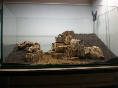 wood for aquascaping freshwater aquarium wood woodworking projects plans