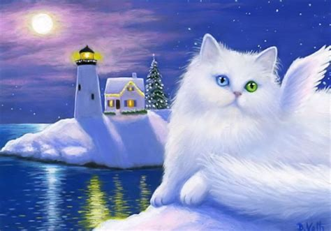 magic cat magical cat cats animals background wallpapers on