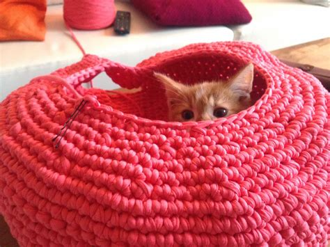 free knitting pattern cat bed lily razz crocheted cat nest
