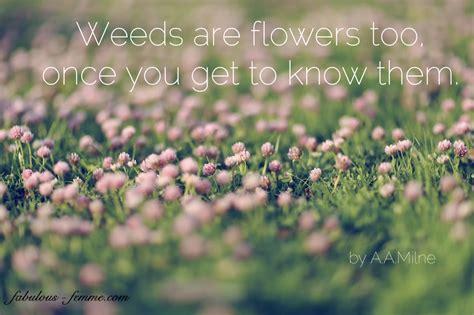 Flower Garden Quotes Best Garden Flower Quotes Quotesgram