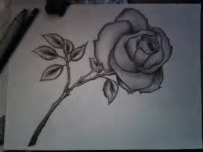 Pencil drawings of flowers with pictures flower pencil sketches