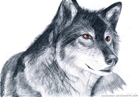 wolves drawings wolf drawing by zuzkadar on deviantart