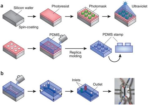 two dot productions fabrication methods for microfluidic chips ders