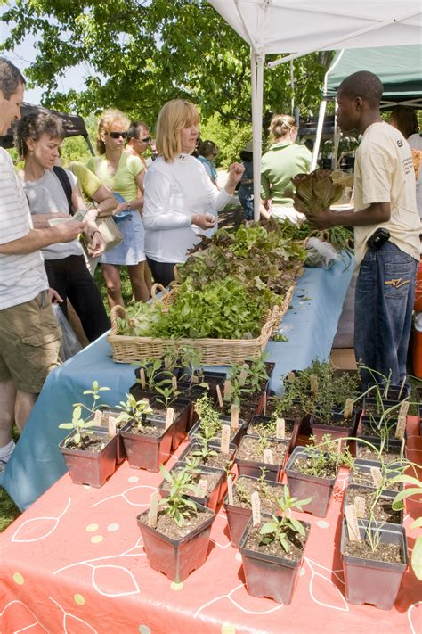 chicago botanic garden events upcoming events chicago botanic garden farmers market