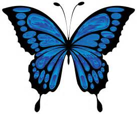 butterfly clipart butterfly in clipart clipartfest