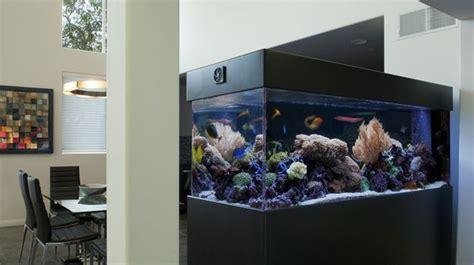 20 modern aquarium design for every interior house 20 modern aquariums for cool interior styles home design