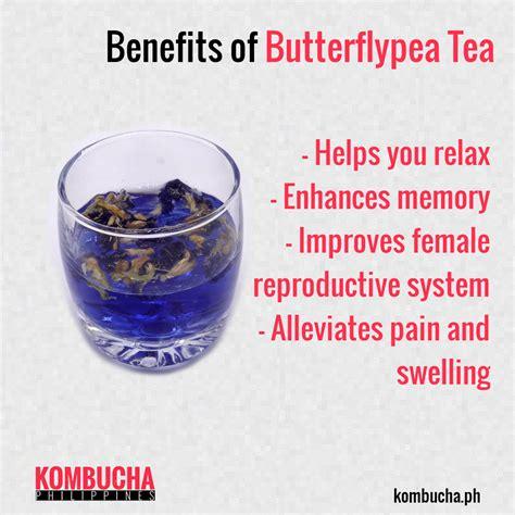 Butterfly Pea Tea 1 organic butterfly pea tea 25g kombucha philippines