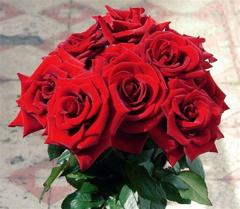 Bouquet Buket Bunga Flanel 12cm Warna Merah Putih Mutiara 1 kumpulan gambar bunga mawar cantik alamendah s