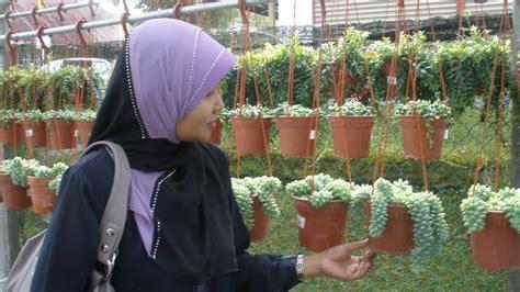 Hiasan Dinding Bunga Dekoratif Btot 1 let s view my bunga gantung hiasan dinding