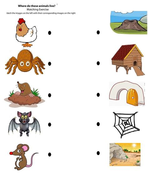 printable animal homes free printable matching animals to their home worksheet 3