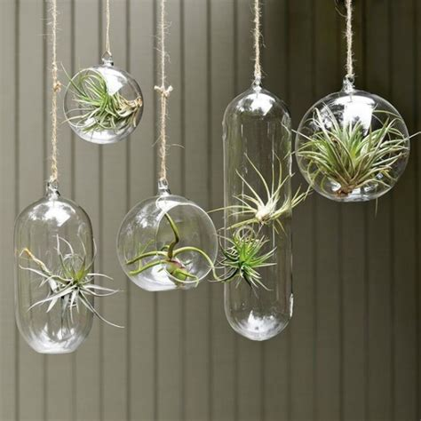 10 unconventional ways to display plants
