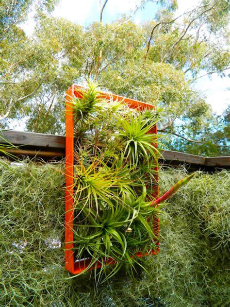 rooftop airplant vertical garden hides solar panels