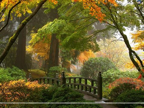 free download landscapes hd wallpaper 92