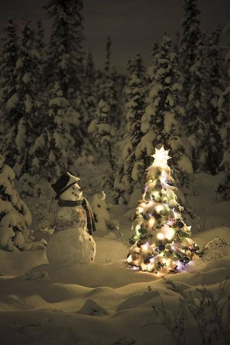 image of winters blessing christmas tree snowman tree in the woods winter solstice beautiful trees and snow