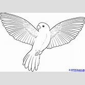 simple-drawing-of-a-bird