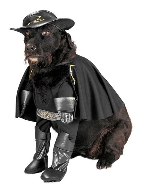 Dont Miss The Best Canine Costumes Onpeoplecom by Zorro Costume Maskworld