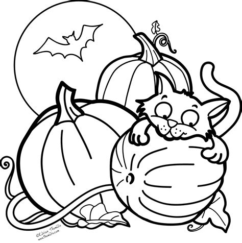 bats and pumpkins coloring pages a picture paints a thousand words pumpkin cat and a bat