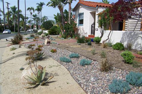 xeriscape lawn 28 images grass is okay gail willey landscaping zero lawn xeriscape