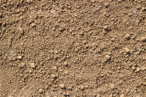 Texture Sol by How To Test Your Soil Texture Sand Silt Clay