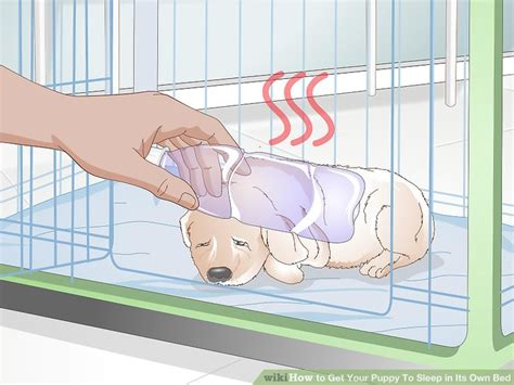 how until a puppy can sleep through the how to get your puppy to sleep in its own bed 13 steps