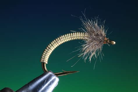 flight pattern of house flies fly tying course 8 the brassie thefeatherbender