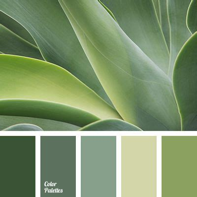 green color schemes best 25 color palette green ideas on green