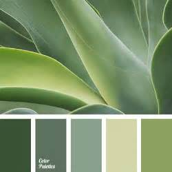 best 25 color palette green ideas on