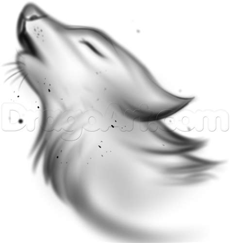 how to a wolf how to draw a wolf spirit step by step forest animals animals free drawing