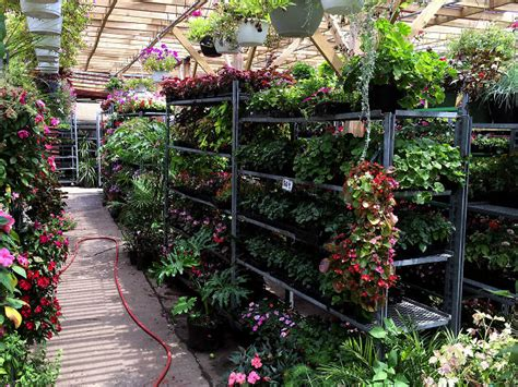 Garden Nyc by Best Garden Store Options In Nyc For Plants Flowers