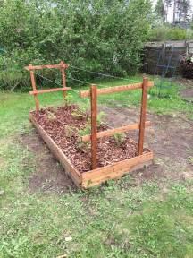 Raspberry Trellis Diy Raised Bed Made From Heat Treated Wood Pine Or