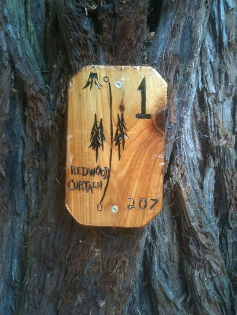 the redwood curtain 1000 ideas about disc golf courses on pinterest disc