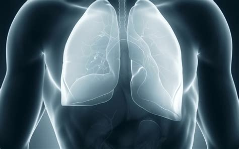 mesothelioma patients in italy slow to enter palliative care