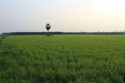 sustainable agriculture wisata dan info sumbar