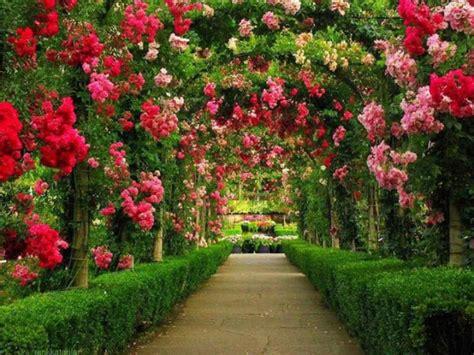 Garden Flower Arch Arch Flower Path Gardens