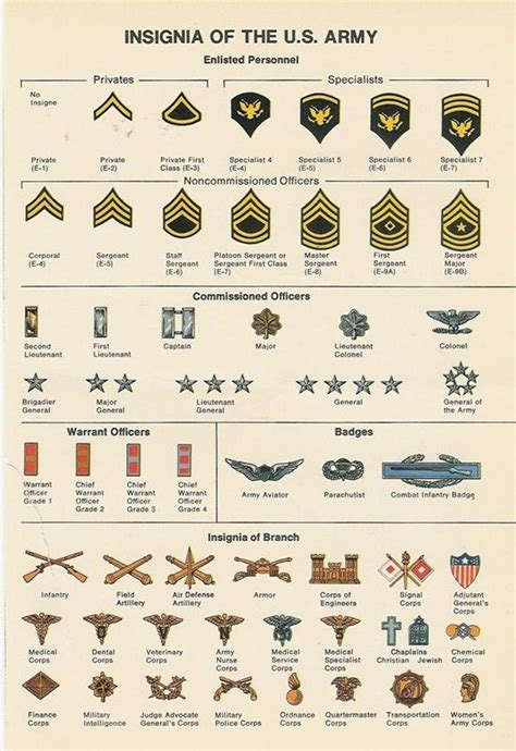 united states navy ranks netherlands military ranks army ranks chart united