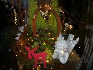 dekoration mit amaryllis amaryllis tipps tricks zur dekoration