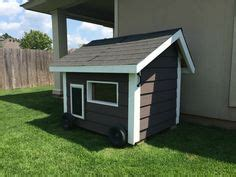 custom dog house   mastiffs complete