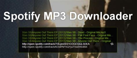 download mp3 van spotify muziek downloaden met spotify mp3 downloader gratis