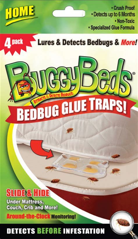 buggy beds home bed bug glue traps usa made by vcm