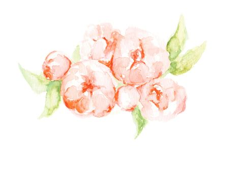Coral Color Home Decor by Peony Print Flowers Floral Painting Floral Watercolor