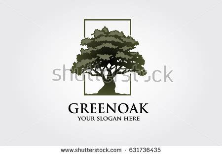 oak logo stock images royalty free images vectors