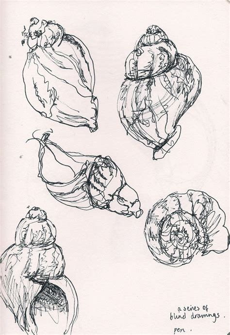 Organic Sketchy Lines by Best 25 Shell Drawing Ideas On Forms