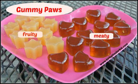 can dogs eat gummy bears gummy paws the canine chef cookbook